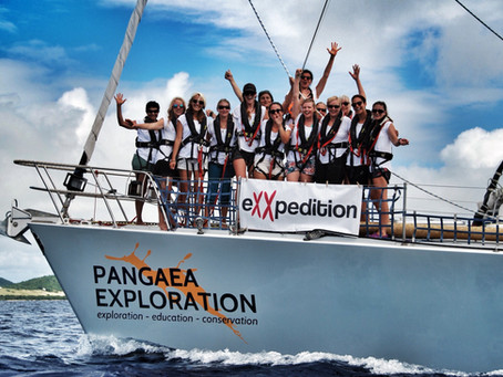 eXXpedition | Eco-Warriors fighting plastic pollution