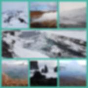 20190320_163716_Fotor_Collage.jpg