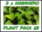 001plantpack_edited.jpg