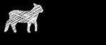 baa foundation logo (2) (1).png