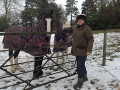 Julia-UK-with-horse-web.jpg