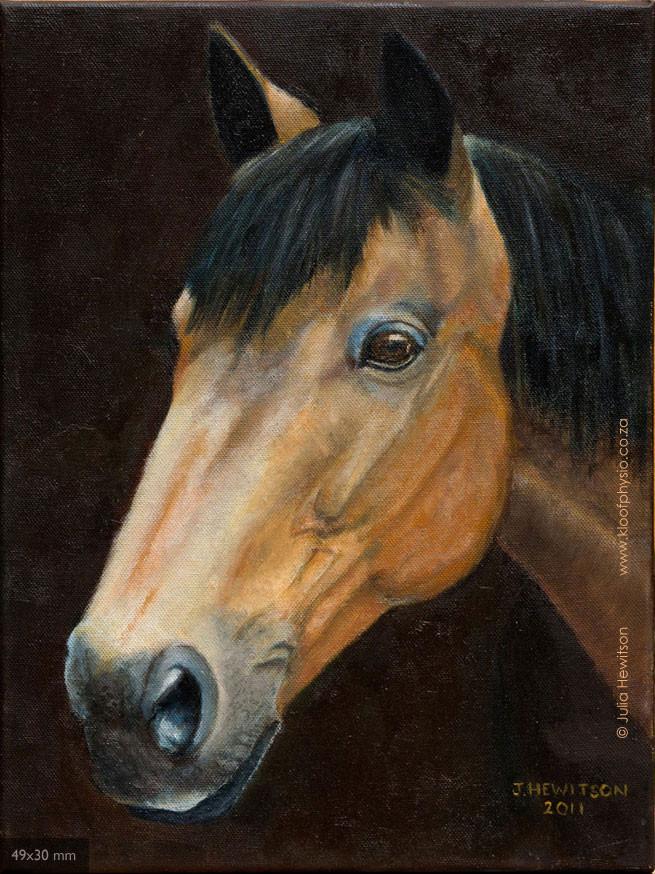 brown_horse.jpg