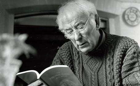 Poet Bio - Seamus Heaney