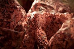 detail, woodblock prints