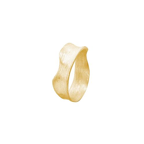Y Ring