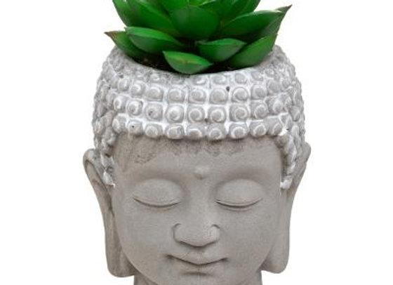 Buddha Head With Plant