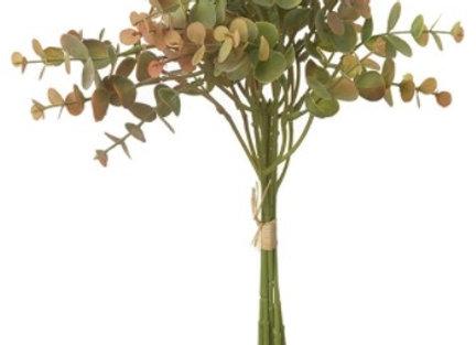 Small Eucalyptus Spray