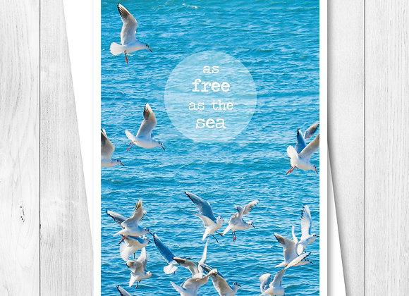 Greeting Card - Single - As free as the sea