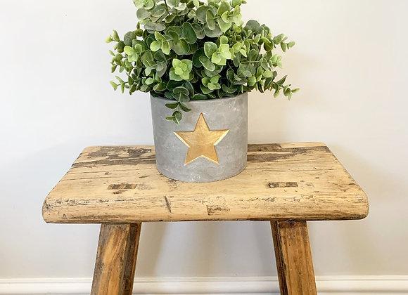 Gold Star Cement Planter 13cm