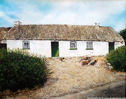 (AF-21) The Thatched Cottage