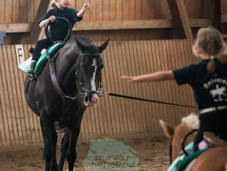 Pferdesportfotograf buchen