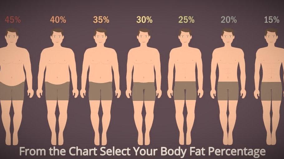 75-85kg Health & Body (Weekly) Male