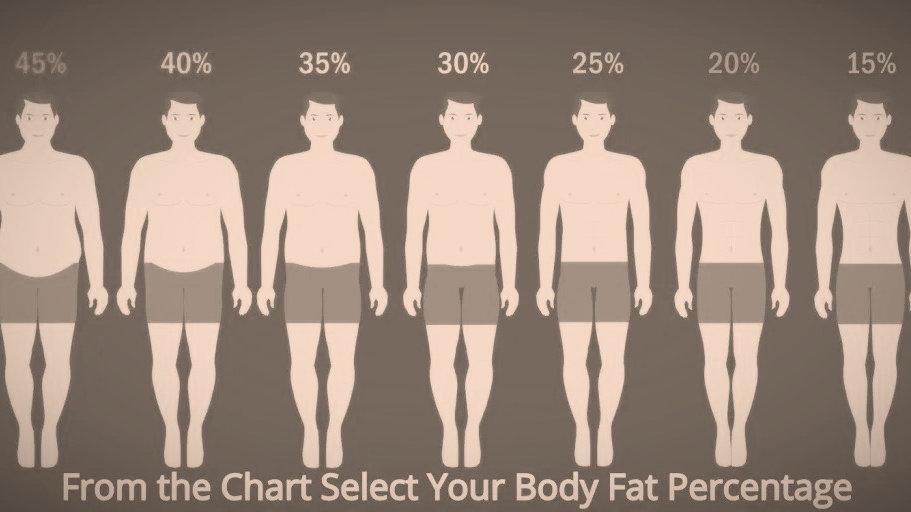 85-95kg Health & Body (Weekly) Male
