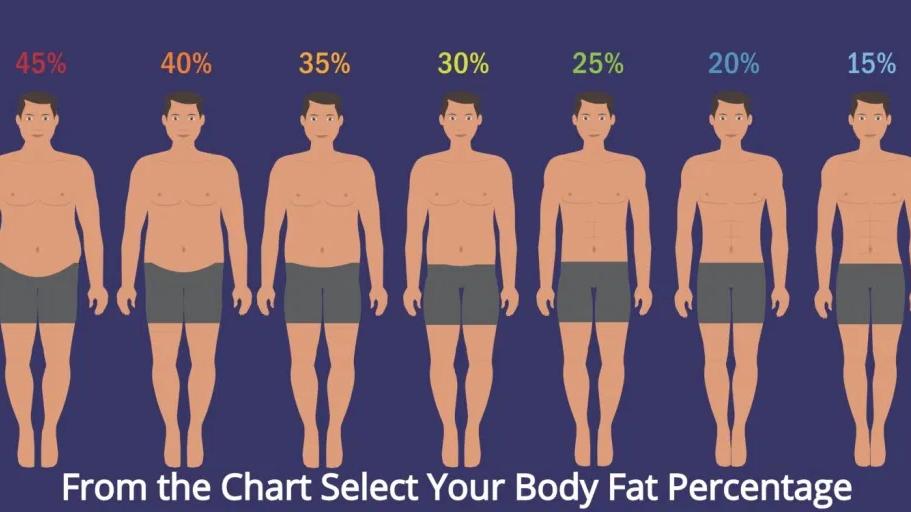 65-75kg Health & Body (Weekly) Male