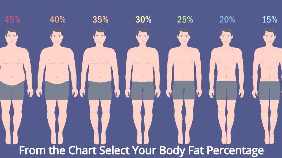 55-65kg Health & Body (Weekly) Male