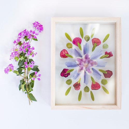 Mandala Pressed Flowers