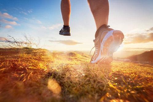 Half Marathon - 16 Weeks