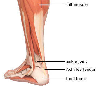 Running Injuries (Part 2) - Achilles Tendinopathies and Plantar Fasciitis