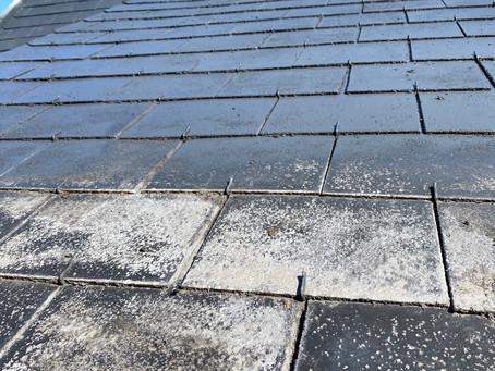 Démousage/peinture toiture en ardoise naturelle 💧