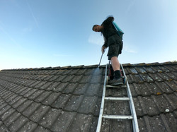 roof-cleaning-lfn-clean2.jpg