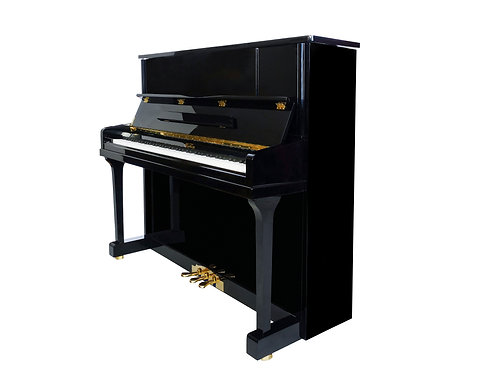 Wertheim Fandrich Series 125cm V1 upright