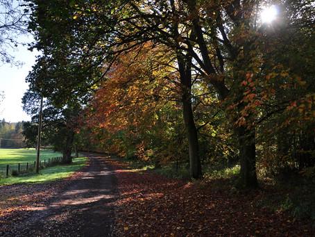 Chedworth Roman Trail