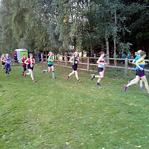 Old Down Country Park XC