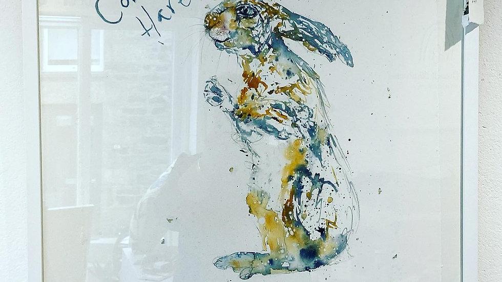 Cornish Hare in the Snow