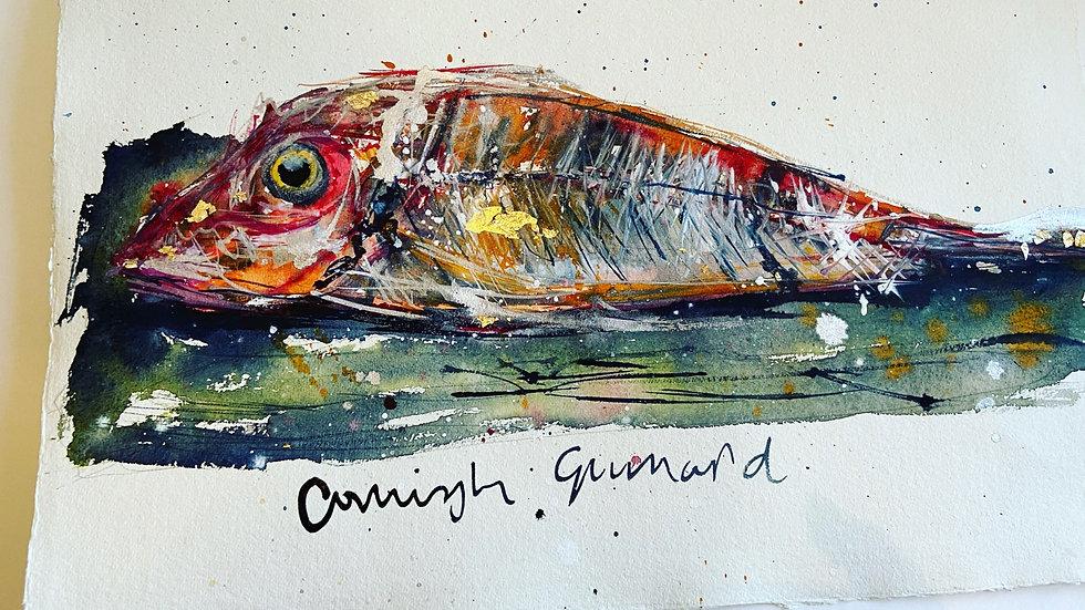 Cornish Gurnard