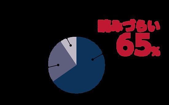 読みづらさアンケート円グラフ2.png
