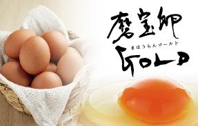 日本一に輝いた!高級卵「磨宝卵ゴールド」/卵明舎