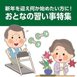 おとなの習い事.jpg