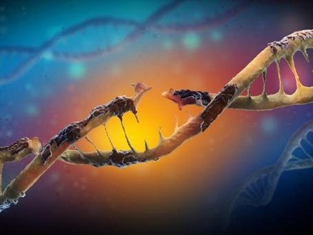 DNA HASARI KANSERLEŞMEYİ NASIL ETKİLER?