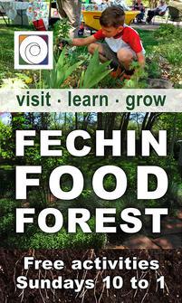 Fechin Food Forest