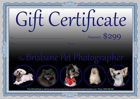 Gift Certificate 299.jpg