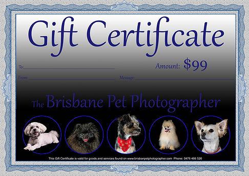 Gift Certificate 99.jpg