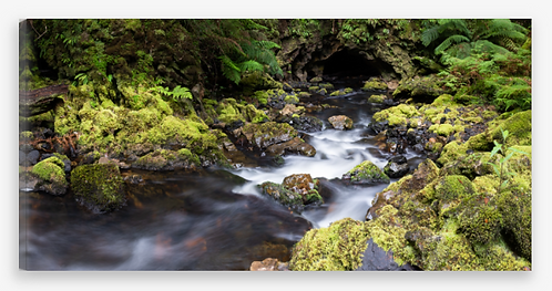Stream and Cave Panorama