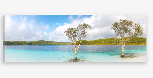 Fraser Island Panorama Canvas