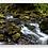 Thumbnail: Stream Panorama