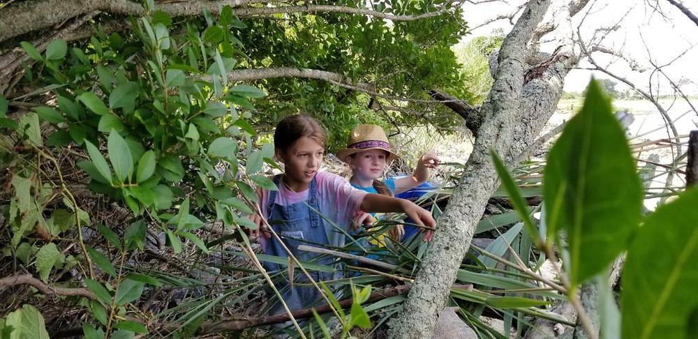 Nature Center - New Jersey Audubon Summer Camp