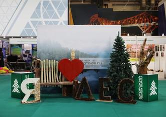 Югорский лесной форум пройдет в Ханты-Мансийске