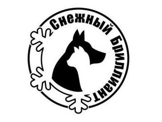 Выставка кошек в Ханты-Мансийске!