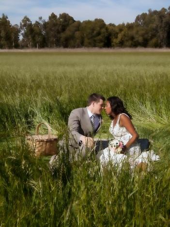 Wedding in Woodland, 2013