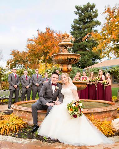 Wedding Party & Fountain