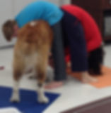 dog helping kids yoga