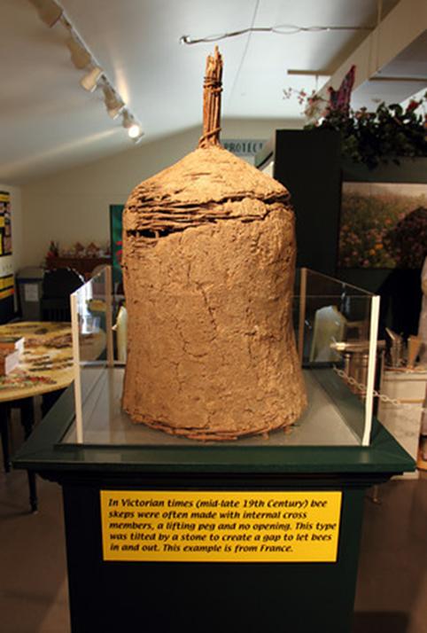 Pollinatarium
