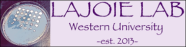Lajoielab logo.png