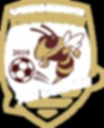 2019 Girls Soccer Logo 2.png