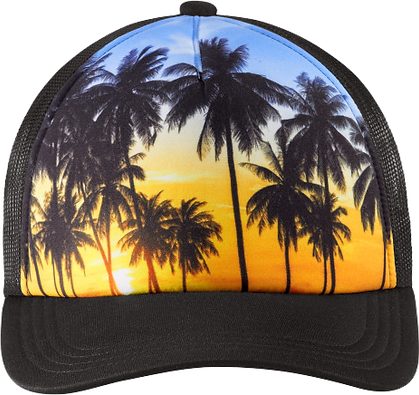 Palm Tree Hat.png