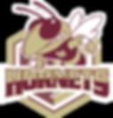 Hornets Logo.png